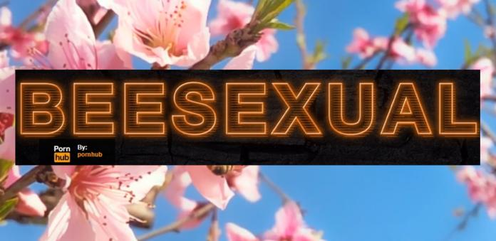 Δουλεία gay πορνό