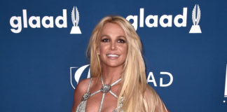 Britney Spears, FreeBritney