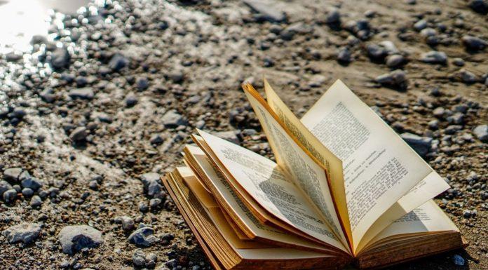 ΛΟΑΤΚΙ+ βιβλία