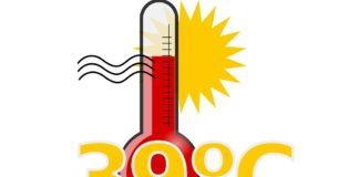 θερμοπληξία, ηλίαση